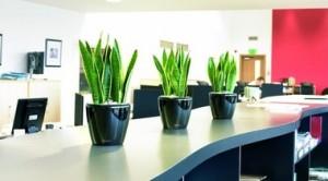 plantas-oficina01